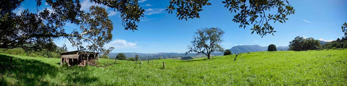 Nimbin Valley Dairy | Our Story | Sustainability 1